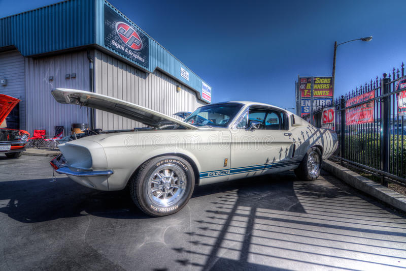 Download Mustangs Plus Stockton Ca Car Show 2014 Editorial Image - Image of california, gt350: 39508905