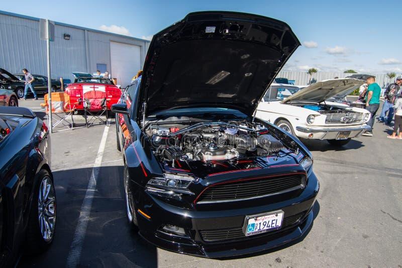 Download Mustangs Plus Stockton Ca Car Show 2014 Editorial Stock Image - Image of california, plus: 39508989