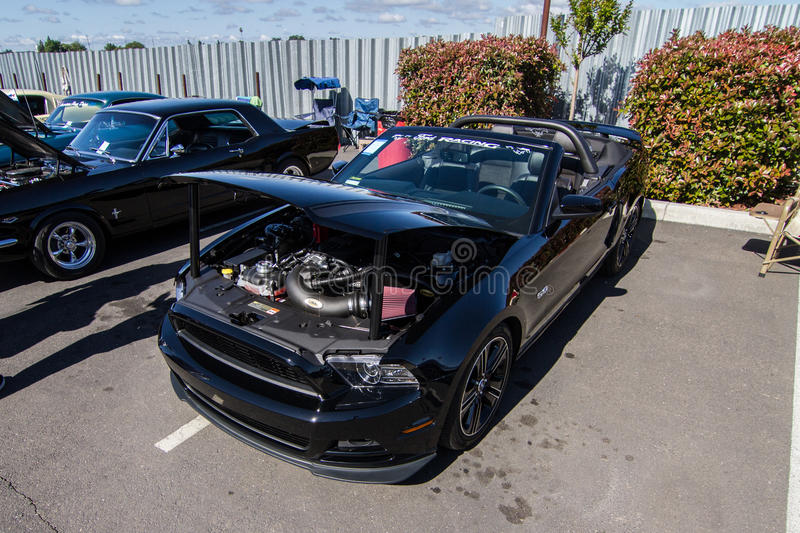 Download Mustangs Plus Stockton Ca Car Show 2014 Editorial Photography - Image of show, mustangs: 39509007