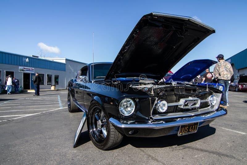 Download Mustangs Plus Stockton Ca Car Show 2014 Editorial Stock Image - Image of california, april: 39509009
