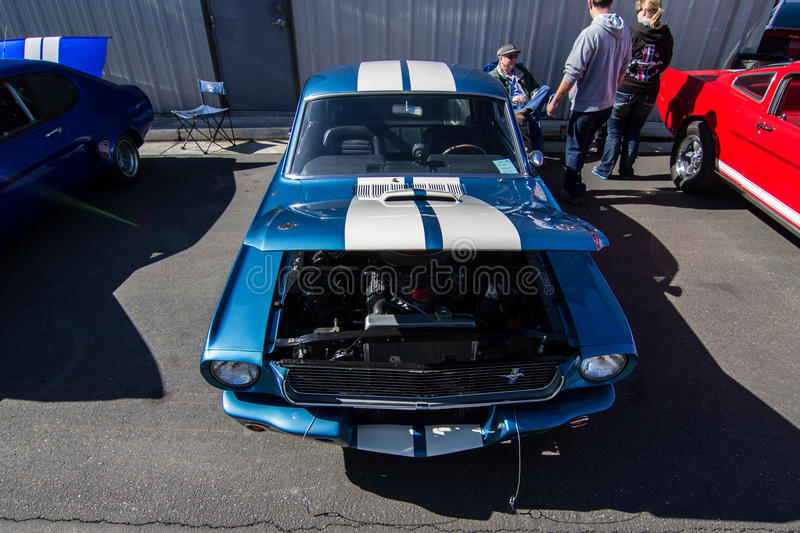 Download Mustangs Plus Stockton Ca Car Show 2014 Editorial Stock Photo - Image of performance, april: 39509073
