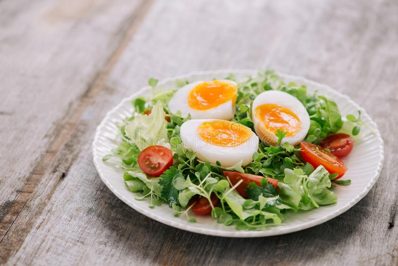 Mustar veldslasalade, hard-gekookte eieren, tomaten en honing royalty-vrije stock afbeelding