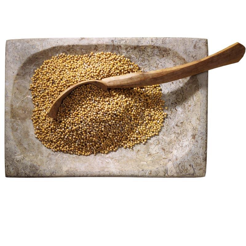 Mustard seed stock photo