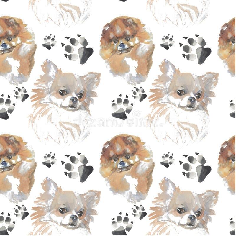 Muster - Begleiterhund lizenzfreie abbildung