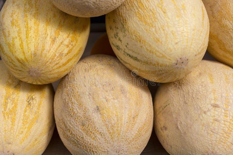 Muster-Beschaffenheitshintergrund der frischen gelben Melonenzusammenfassungsfrucht bunter stockbild