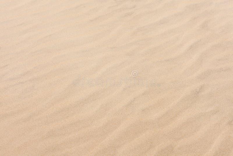 Muster bewegt auf goldenen Sandstrand wellenartig stockfotografie