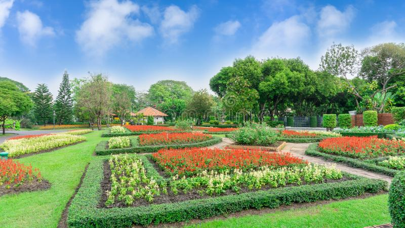 Muster der englischen Art des formalen Gartens, G?rten mit geometrischer Form des Busches und Strauch, Dekoration mit bunter bl?h lizenzfreies stockbild