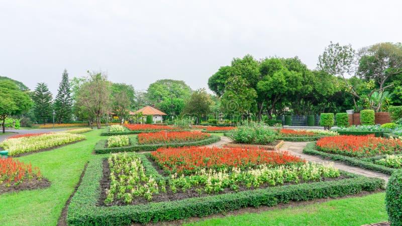 Muster der englischen Art des formalen Gartens, G?rten mit geometrischer Form des Busches und Strauch, Dekoration mit bunter bl?h stockfoto