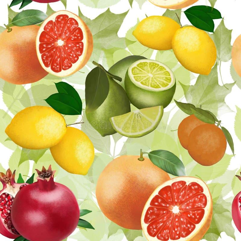 Muster der Frucht auf dem Hintergrund von grünen Blättern lizenzfreie stockfotografie