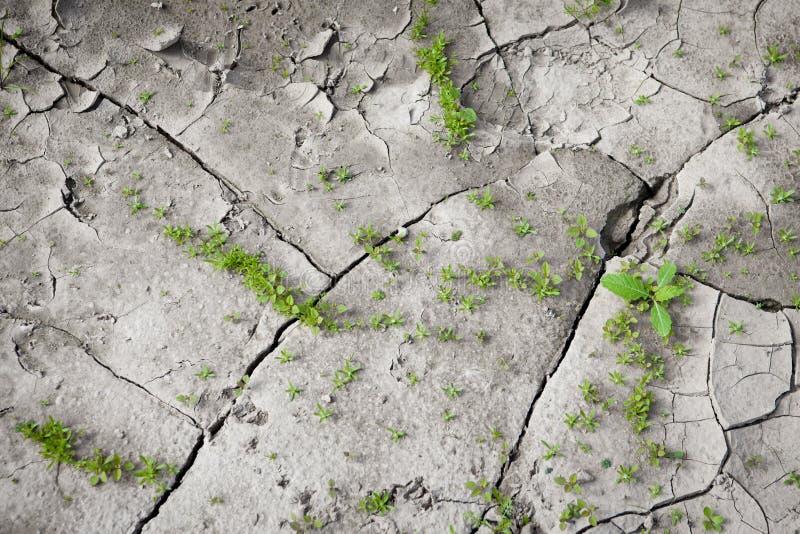 Muster geschaffen von einer gebrochenen Erde des Fotos Trockenes Wetter, Dürre lizenzfreie stockbilder