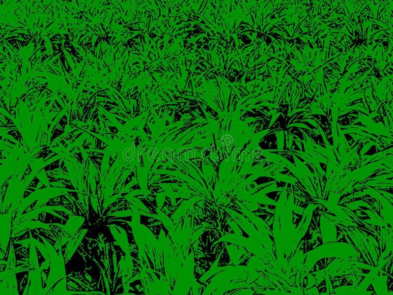 Muster mit grünem Gras für Hintergrund vektor abbildung
