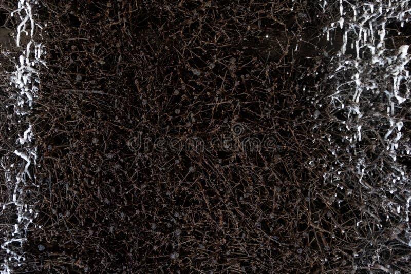 Muster, Struktur des Schlehdorns rollt mit Wasser und Salz für Salzbereicherung in der Staffelungsanlage im Kurpark zusammen stockfoto