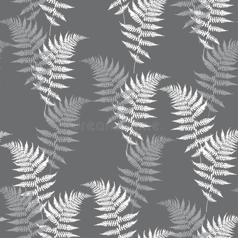 Muster-Vektorillustration des realistischen Farns nahtlose Ausführlicher Adlerfarnfarnvektor, tropischer Wald lizenzfreie abbildung