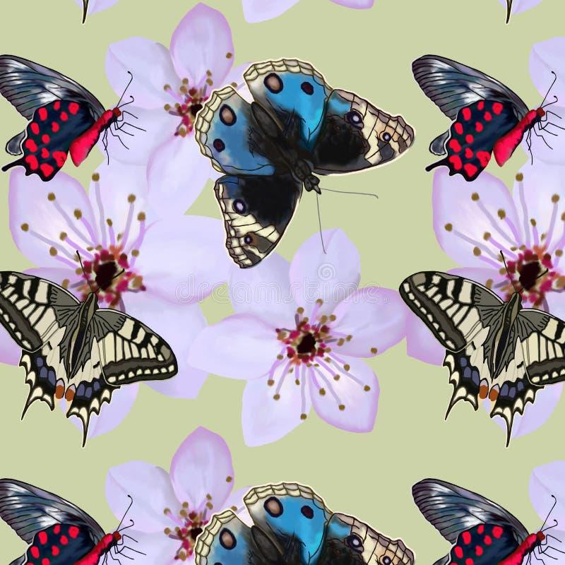 Muster von Schmetterlingen und von Blumen auf einem hellen Hintergrund lizenzfreie stockfotos