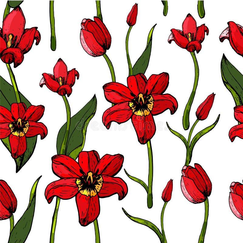 Muster von Tulpen lizenzfreies stockbild