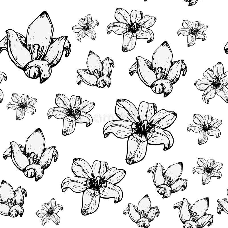 Muster von Tulpen lizenzfreie stockfotos