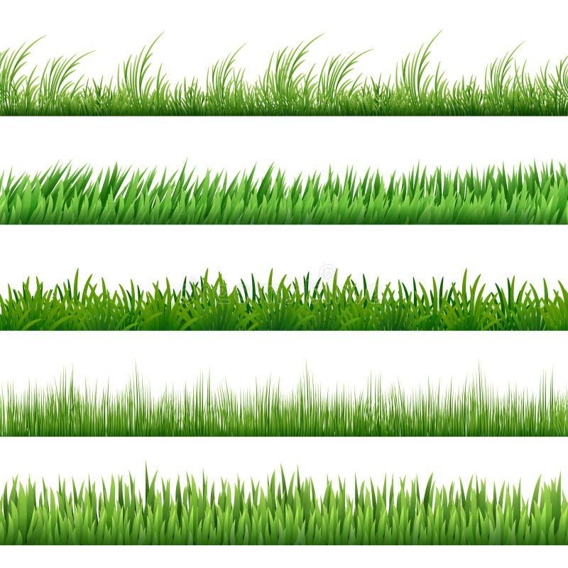 Mustersatz des grünen Grases Vektormakrogrenzen lokalisiert auf weißem Hintergrund lizenzfreie abbildung