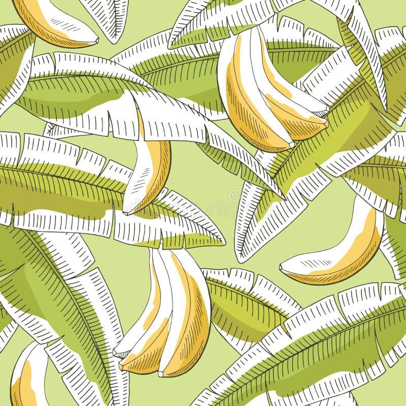 Musterskizzen-Illustrationsvektor des Bananenfruchtblattes grafische grüne gelbe Farbnahtloser stock abbildung
