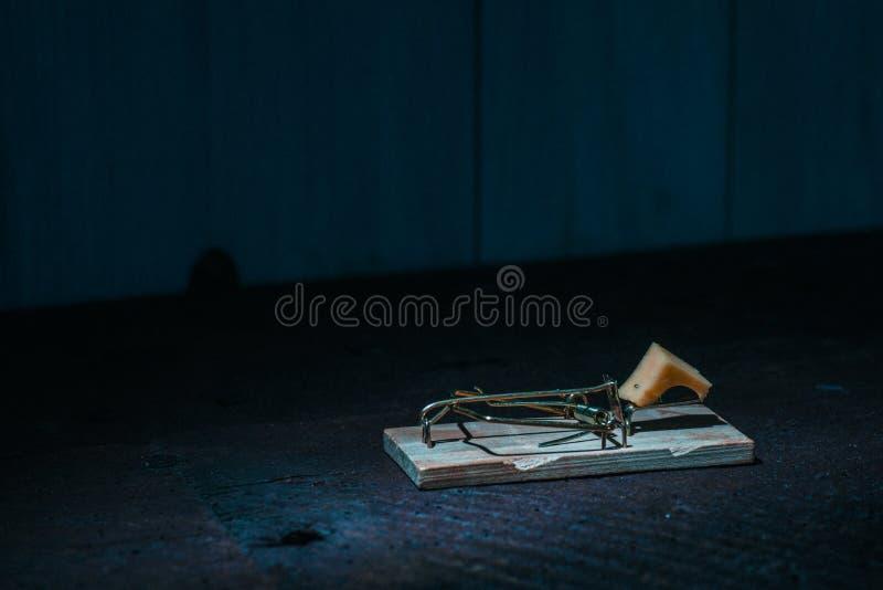 Mustrpa på golvet arkivfoto