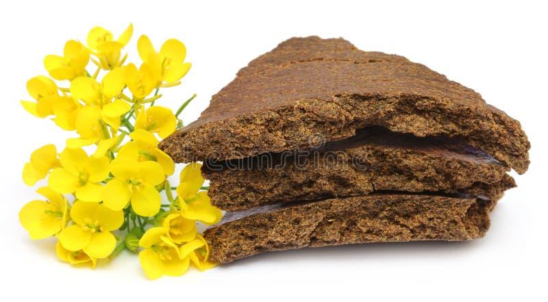 Musztarda tort i kwiaty obrazy royalty free