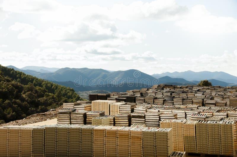 Musztrujący skał sedno - Maroko zdjęcie stock