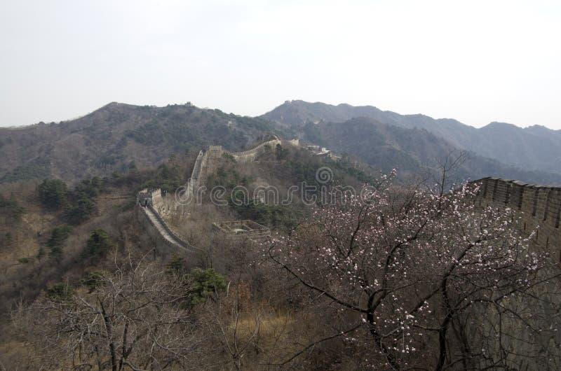 Mutianyu Grote Muur, de Lentetijd Peking stock foto