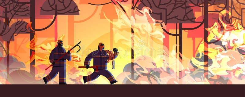 Mutige Feuerwehrmänner mit Schrott und Schläuchen, die gefährliche Waldbrandfeuerwehrmänner auslöschen und mit der Brandbekämpfun vektor abbildung