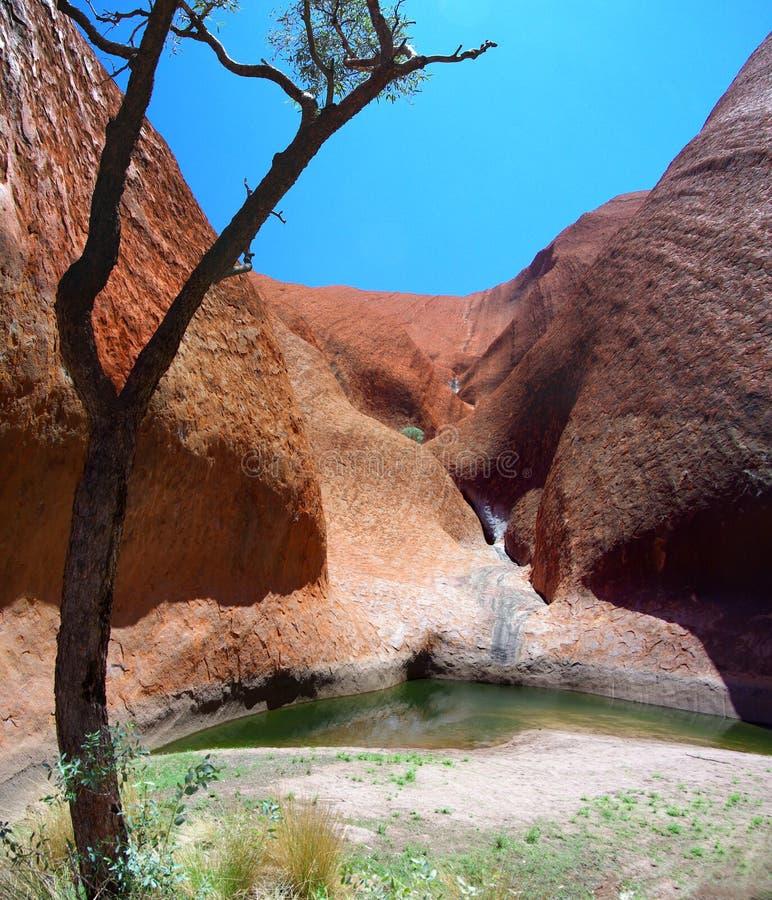 Mutitjulu Waterhole Uluru stockfotos