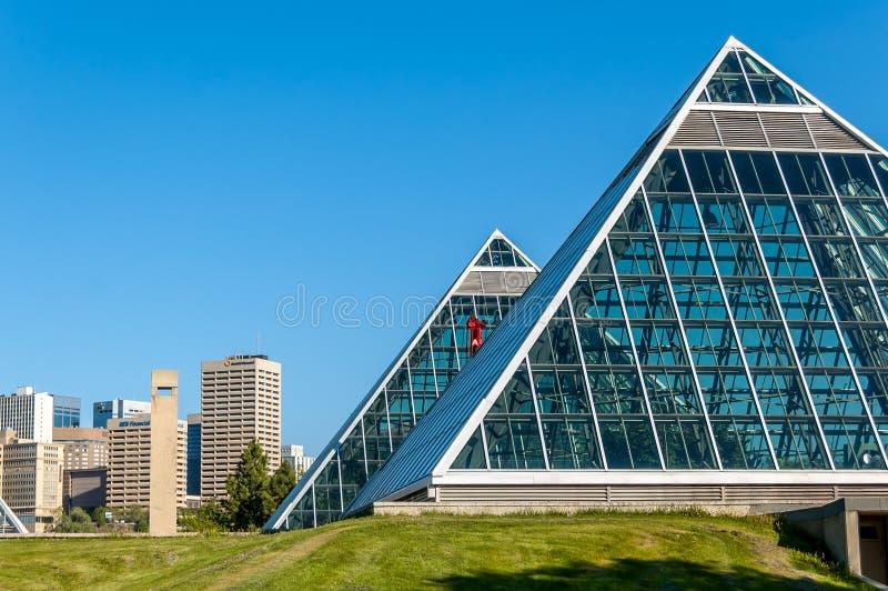 Muttart drivhus, Edmonton royaltyfria bilder