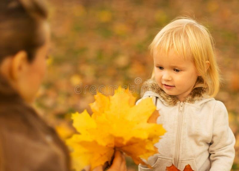 Mutter, die Schätzchen gefallene Blätter zeigt stockbild