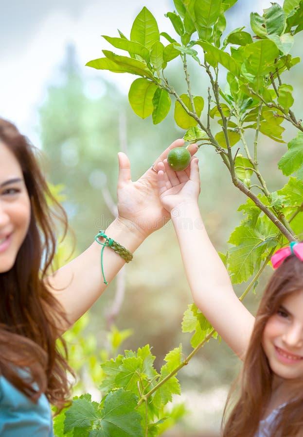 Mutter mit Tochter im Obstgarten lizenzfreies stockbild