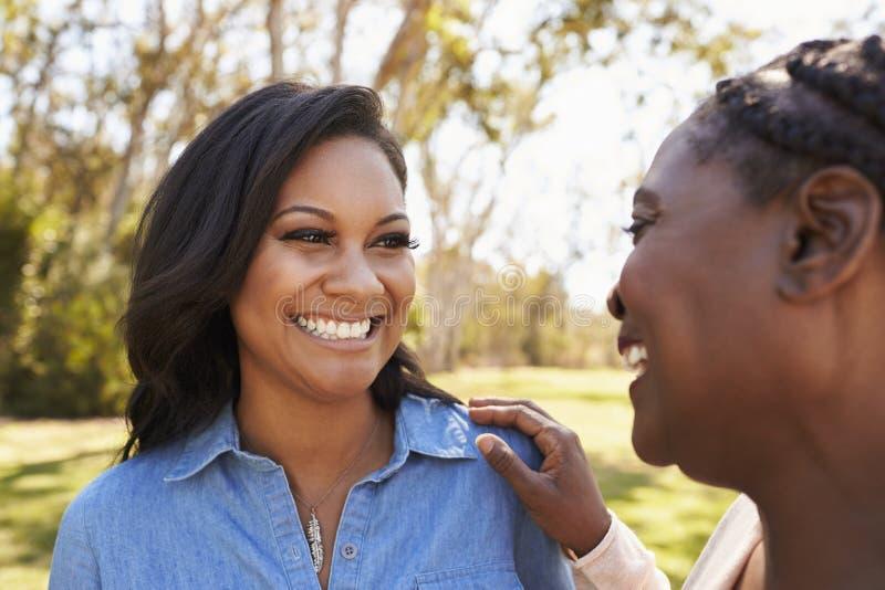 Mutter-und Erwachsen-Tochter, die zusammen im Park spricht stockfotografie