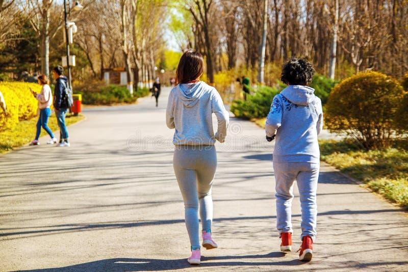 Mutter und erwachsene Tochter, die für Sport im Park für bessere Eignung laufen lizenzfreies stockfoto