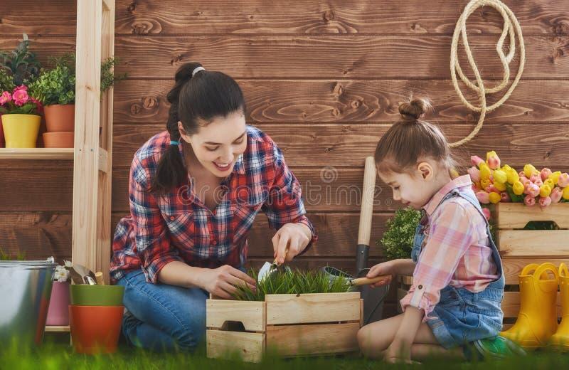 Mutter und ihre Tochter teilgenommen an der Gartenarbeit lizenzfreie stockfotos