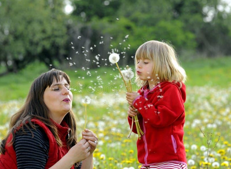 Mutter und Tochter auf einer Wiese lizenzfreie stockfotografie