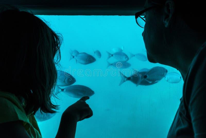 Mutter und Tochter, die Fische durch ein Glas in einem Boot betrachten stockfotos