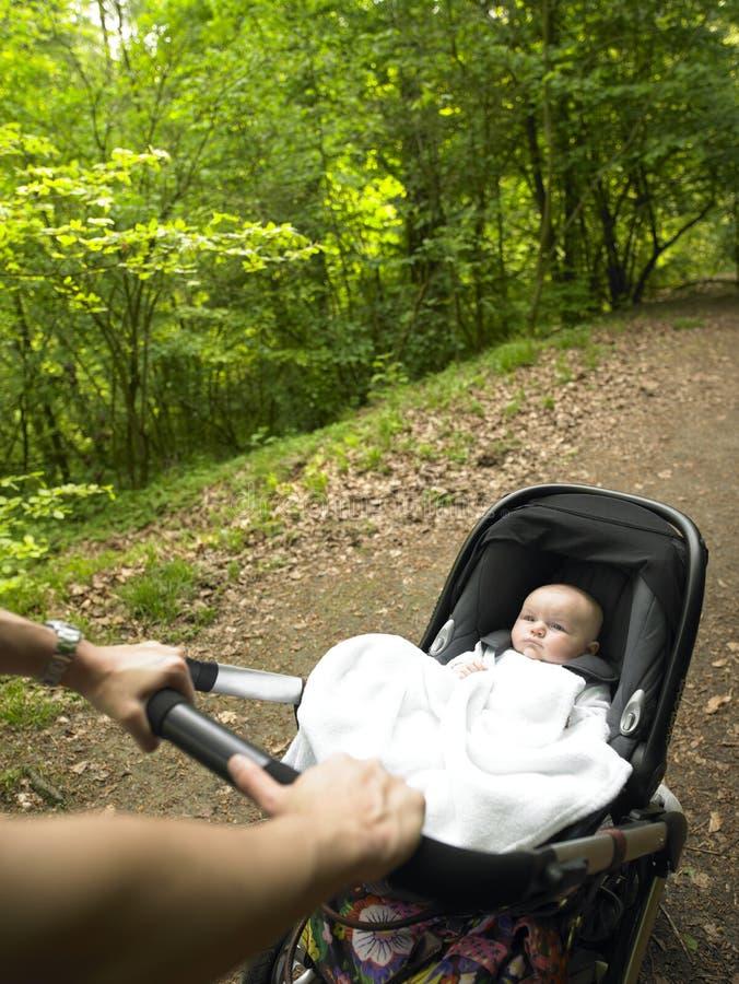 Muttergesellschaft und Schätzchen, die einen Spaziergang im Holz machen lizenzfreies stockfoto