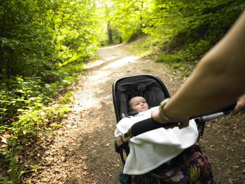 Muttergesellschaft und Schätzchen, die einen Spaziergang im Holz machen lizenzfreies stockbild