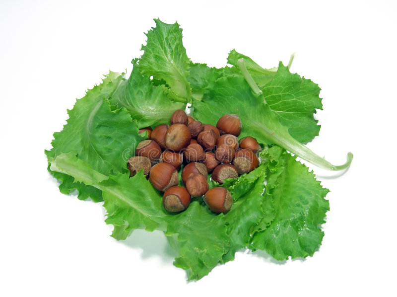 Muttern und Salat 2 lizenzfreies stockbild