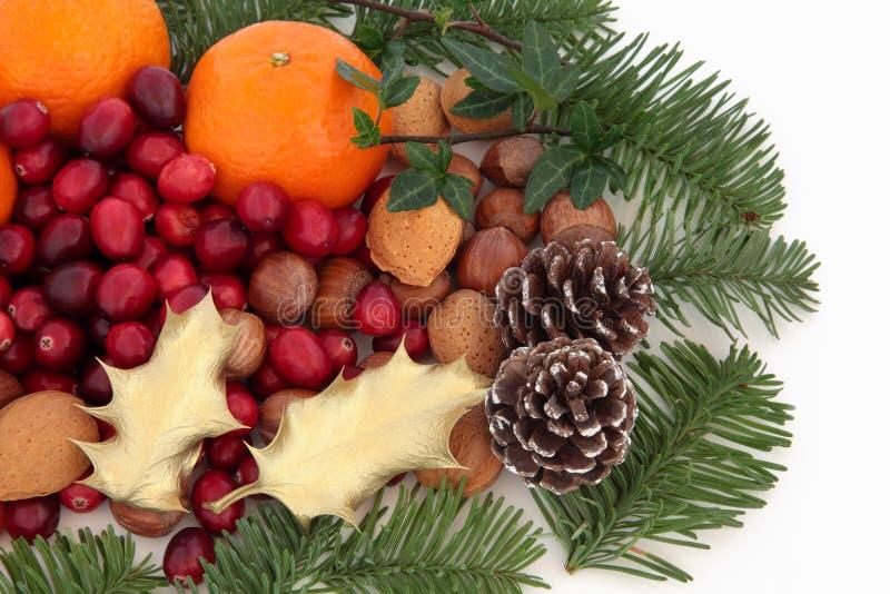 muttrar för julfaunafrukt arkivfoton