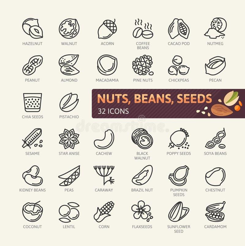 Muttrar, frö och bönabeståndsdelar - minsta tunn linje rengöringsduksymbolsuppsättning Översiktssymbolssamling vektor illustrationer