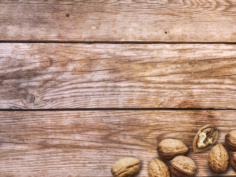 muttrar Hela och besköt valnötter på wood bakgrund royaltyfri fotografi