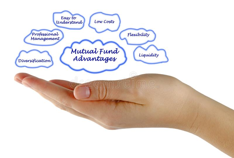 Mutual Fund Advantages. Diagram of Mutual Fund Advantages royalty free stock photography