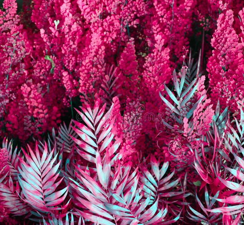 Muur met tropische planten Aard rode achtergrond royalty-vrije stock fotografie