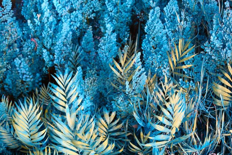 Muur met tropische planten Natuur blauwe achtergrond royalty-vrije stock afbeeldingen