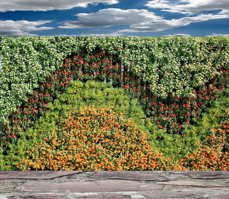 Muur van de bloemen de verticale tuin stock foto