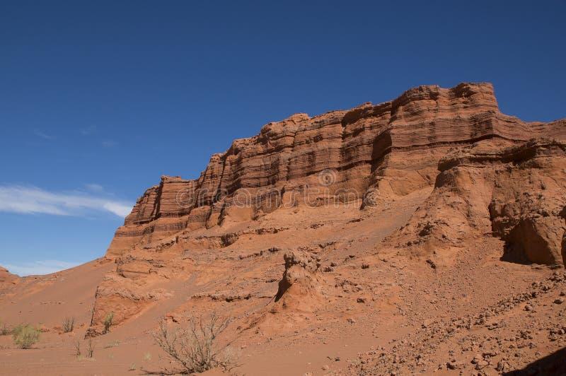Muur van de canion van Kharmin Tsav in de Mongoolse woestijn van Gobi stock foto's