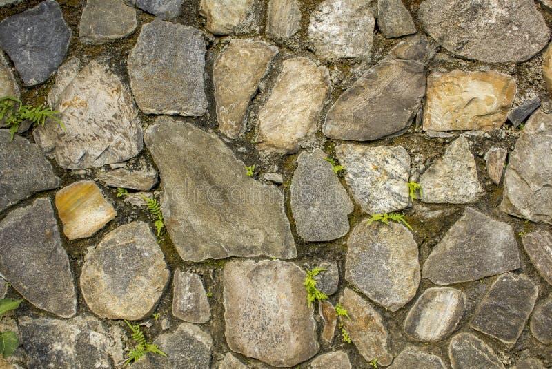 Muur van diverse grote natuurstenen met kleine groene vegetatie Muur met mos de ruwe textuur van de muuroppervlakte grijs, blauw  royalty-vrije stock afbeeldingen