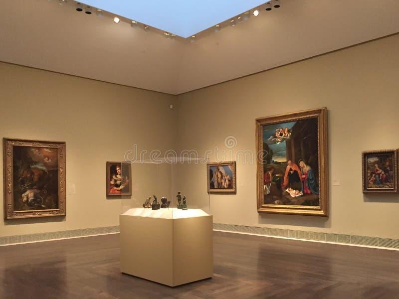 Muzeum sztuki piękna Houston fotografia royalty free