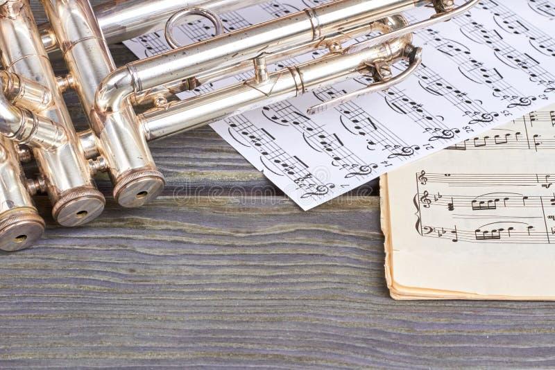 Muzikaal instrument op houten achtergrond stock afbeelding